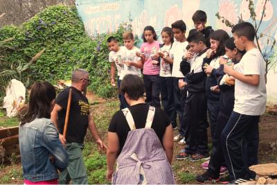 20151112133940-huerto-blog.png